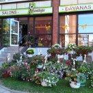 Ziedu Fantāzija, Ziedu veikali